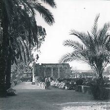 ISRAËL c. 1960 - Synagogue Époque Romaine Capharnaüm  - Div 10490
