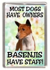 "Basenji Dog Fridge Magnet ""Most Dogs Have Owners Basenjis Have Staff"""