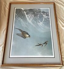 Robert Bateman Peregrin Falcon And White Throated Swift Limited E 286/950 Signed