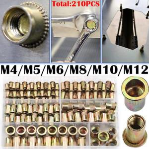 210PCS Mixed Size Rivet Set Nut Carbon Steel Tool Threaded Nut M4-M12 Assortment