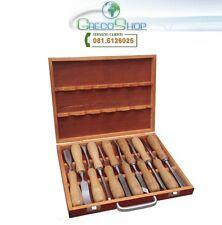 Sgorbie e scalpelli a taglio per legno professionali set 12 pz in valigetta