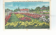 Famous Jackson and Perkins Rose Garden   Newark NJ   Mailed 1952   Postcard 764