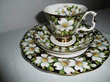 Royal Albert-Porzellan-Bone China-England-Provincial Flowers Sammeltasse Gedeck