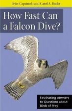 How Fast Can a Falcon Dive?: Fascinating Answers to Questions about Birds of Pre