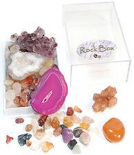 NEW ROCKS & MINERALS Rock Box Collection Amethyst Rose Quartz Geodes Gemstones