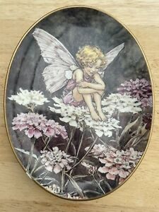 Royal Worcester Oval Collectors Plate THE CANDYTUFT FAIRY From FLOWER FAIRIES