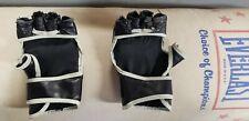 Everlast Boxing Bag & Gloves,