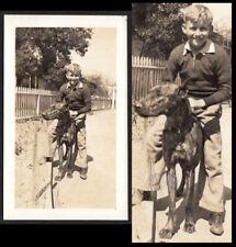 New listing Boy Rides Unfazed Giant Great Dane Dog Like Horse ~ 1920s Vintage Photo
