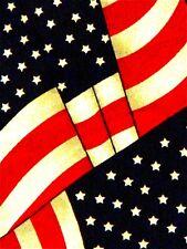 NEW BILLOWING AMERICAN FLAG PATRIOTIC USA NECKTIE NECK TIE STEVEN HARRIS SLVD #7