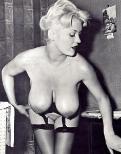 PAULA PAGE Big Boobs Classic Glamour 10 x 8 Photo No 4