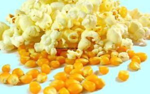 2 kg PREMIUM Popcornmais Mushroom Profi Spezial Mais für Popcorn Maschine