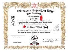 Goju Ryu Custom 11 X 14 certificate