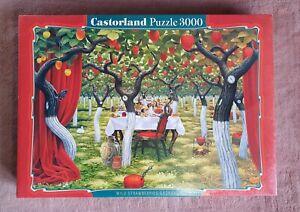 Puzzle 3000 Castorland, Wild Strawberries Orchard, Jacek Yerka