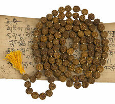Collier Mala Rosaire Shiva Graines Rudraksha 5 faces Ø 10 mm Nepal 1994 S3