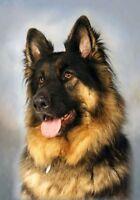 German Shepherd Dog (Longcoat) - Blank Card (A6) design No. 21 - by Starprint