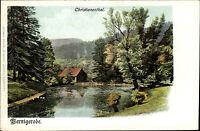 Wernigerode Harz Christianenthal Litho-AK um 1900 ungelaufen Verlag O. Zieher