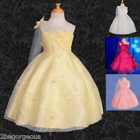 Girl Dress Wedding Flower Girl Bridesmaid Party Occasion Holiday Age 4-8 Yrs 079