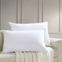 AIKOFUL Feather and Down Bed Pillow,Queen Size 2 Pack, Firm White Goose Down and