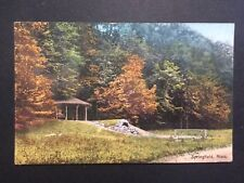 Antique POSTCARD c1913 Scene on Meadow Road Forest Park SPRINGFIELD, MA (20536)