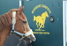 2 HORSE TRAILER / VAN CAR DECALS VINYL GRAPHICS STICKER