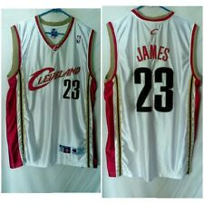 LEBRON JAMES CLEVELAND CAVALIERS NBA BASKETBALL PRO CUT JERSEY CHAMPION SIZE 48