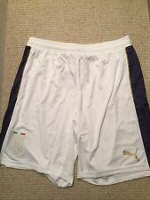 Puma Dry Cell Mens Shorts, Italia, Size L, White, New