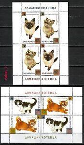 2013  Bulgaria Animals Domestic Cats Pet Kittens  2 x minisheet  MNH **