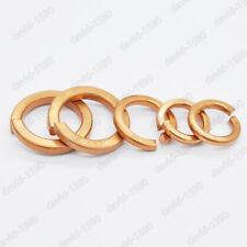 M3 M4 M5 M6 M8 M10 M12 Phosphor Bronze Spring Washers Split Lock Washer DIN127