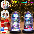 LED Eternal Rose Flower in The Glass Dome Christmas Valentine's Day Gift US