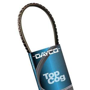 Accessory Drive Belt Dayco 15495