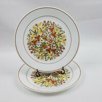 "Set of 2 Vintage Corelle Indian Summer 10 1/4"" Dinner Plates Harvest Colors"