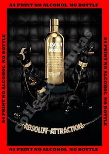 ABSOLUT Vodka - Absolut ATTRACTION Doberman Ad - A4 PRINT + FREE POSTAGE