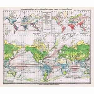 Niederschlage, Meeresstromungen (Rainfall, Ocean Currents) Vintage Map 1926