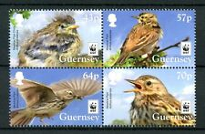 Guernsey 2017 MNH Meadow Pipit WWF Endangered Species 4v Block Birds Stamps