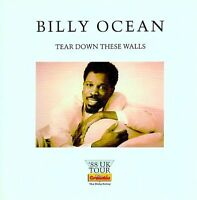 BASIA / BILLY OCEAN 1988 TEAR DOWN THESE WALLS TOUR PROGRAM BOOK / NMT 2 MINT