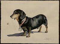 DETWILER - Dachshund Dog - Original Watercolor Painting - Signed