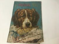 The Doggie Picture Book Dog Animal Antique Vintage Childrens Color Illustrations