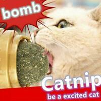 Natural Catnip Toys Mint Cat Treat Ball Teasing Cleaning S4U5 Teeth Toy R8F8