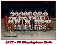WHA 1977 - 78 Birmingham Bulls Color Team Picture 8 X 10 Photo Picture