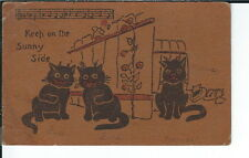 Ay-295 - Keep on the Sunny Side, Cats, 1907-1915 Golden Age Postcard Vintage