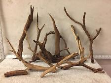 Manzanita Driftwood Aquarium Reptiles Mounts Crafts Perches Lot of 12 Branches