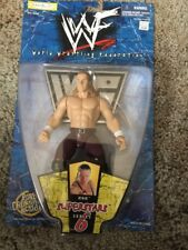 WWF Triple H Superstars Wrestling action figure Series 6 Jakks Pacific