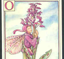 """Fairy Alphabet """"O"""" Orchis,Orchid,Cmb,Barker Postcard"""