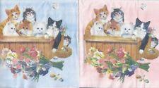 2 Lunch Papier Servietten Napkins (JJ9) Katzen im Korb 1 Seite rosa, 1 blau