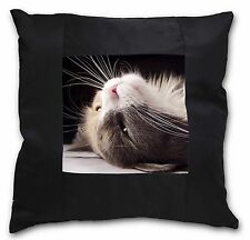 Cat in Ecstacy Black Border Satin Feel Cushion Cover With Pillow Inser, AC-3-CSB