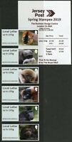 Jersey 2019 MNH Durrell Primates Post & Go Spring Stampex JE01 6v Loc Str Stamps