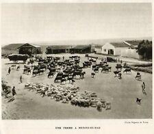 MEDJEZ EL BAB UNE FERME A FARM TUNISIE TUNISIA IMAGE 1939 PRINT