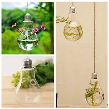 Bulb Ball Shaped Glass Hanging Plant Terrarium Flower Vase Wedding Decor FF