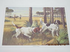 old print bird dogs pointer/ setter titled point of honor hunting