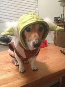 Star Wars Classic Pet Yoda Dog Halloween Costume